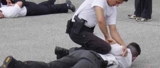 Selbstschutz Verteidigung Sicherheitsfachkräfte Sicherheitsdienst Security